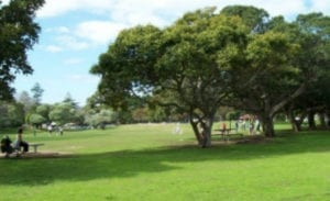 Lyne Park | Timeshare Dog Park in Rose Bay