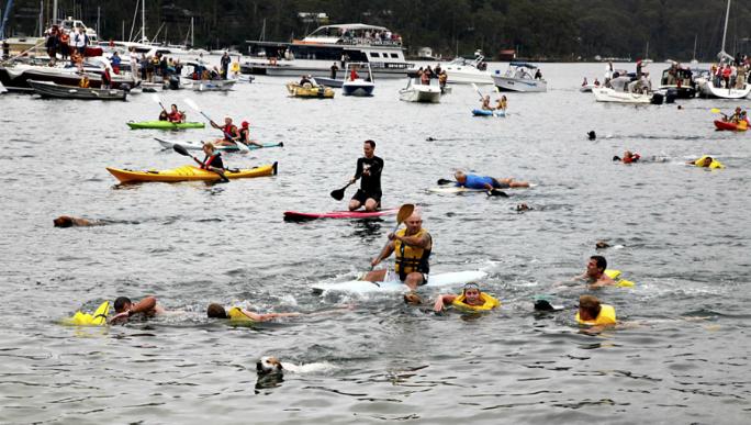 Scotland Island New South Wales: Scotland Island Dog Swim Race