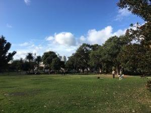 Victoria Park | Pupsy