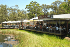 The Deck Cafe Lovedale | Dog Friendly Cafe in Hunter Valley