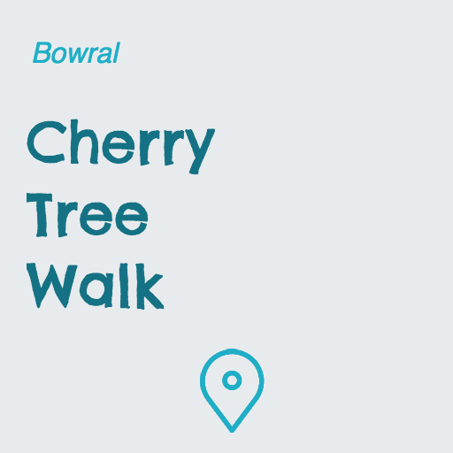 Cherry Tree Walk on Pupsy