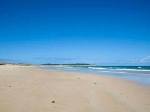 Greenhills Beach | Timeshare Dog Beach in North Cronulla
