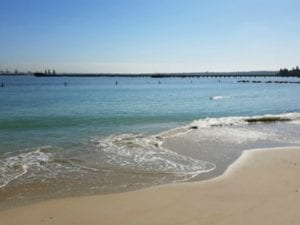 Silver Beach | 24h Dog Beach in Kurnell