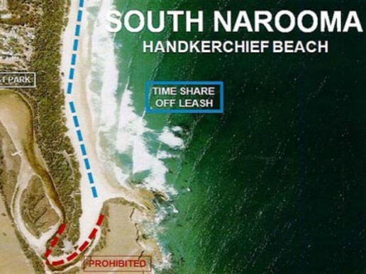 Handkerchief Beach | Timeshare Dog Beach in South Narooma | Pupsy