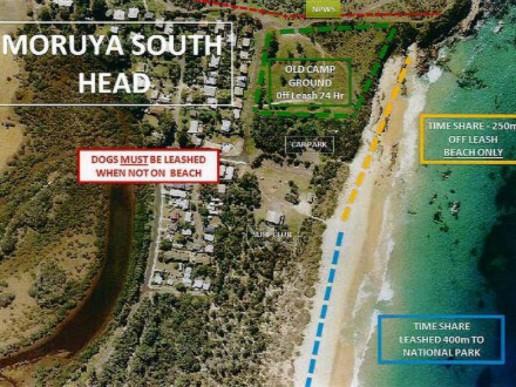 Moruya Main Beach | Timeshare Dog Beach in Moruya | Pupsy