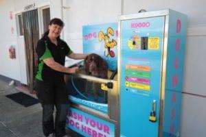 Prime Pet Friendly Tourist Park | Dog Friendly Tourist Park in Lakes Entrance