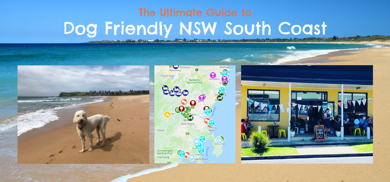 Ultimate guide to South Coast