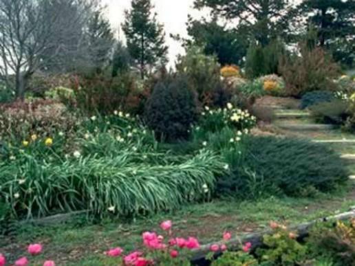 Orange-Botanic-Gardens-1