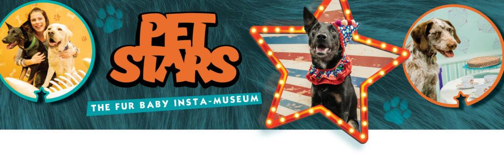 Pet Stars Banner wide
