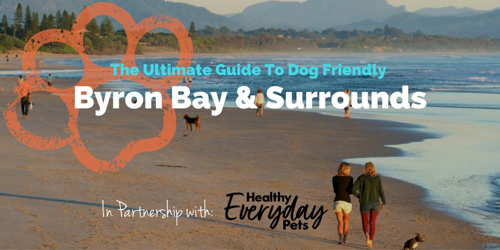 Dog-Friendly-Byron-Bay-HEP