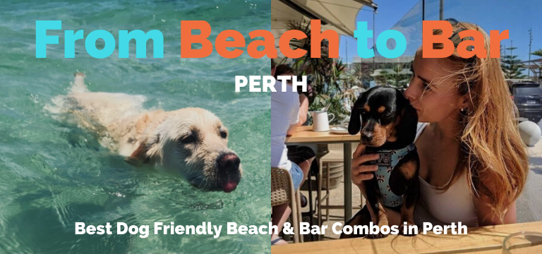 Beach to Bar Perth