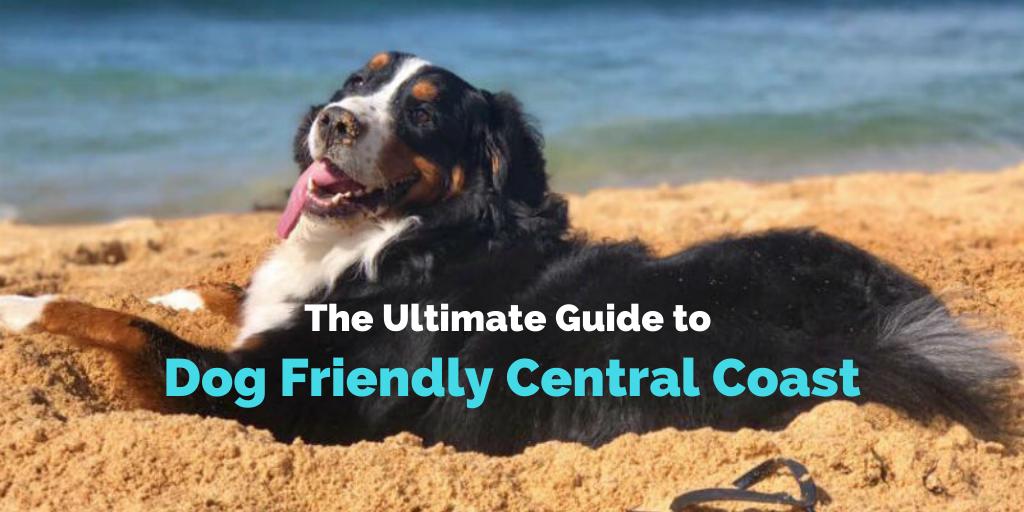 Central-Coast-blog