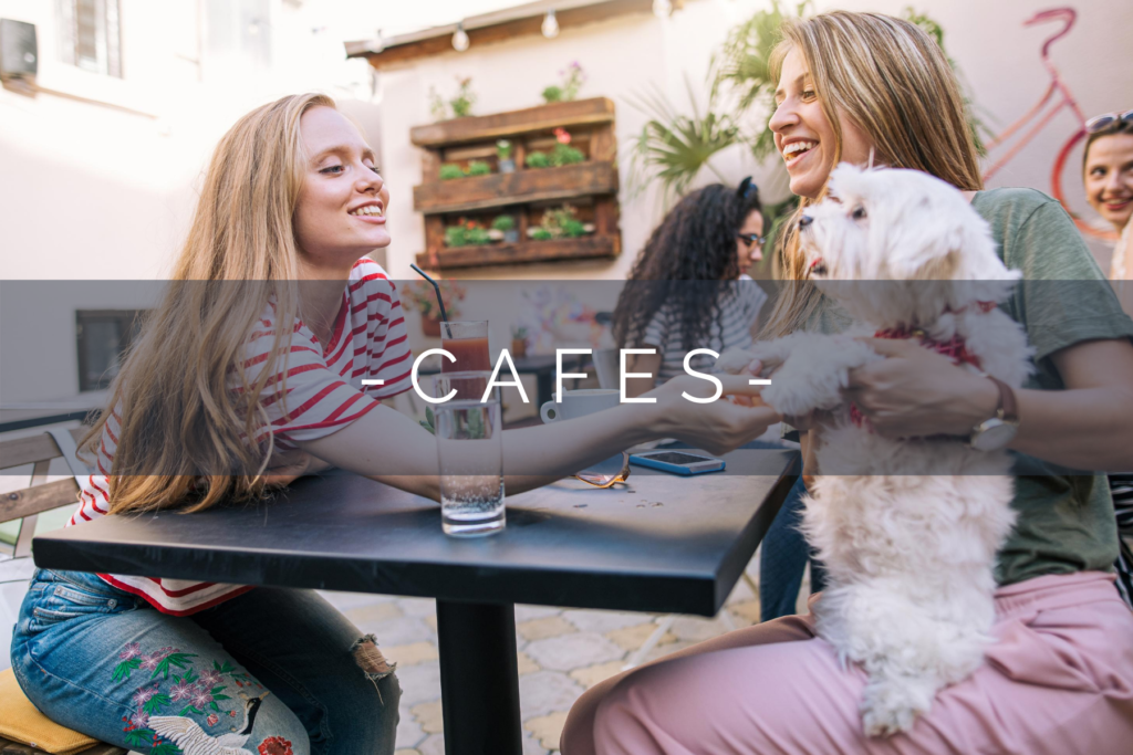 DOG-FRIENDLY-CAFES-HOME