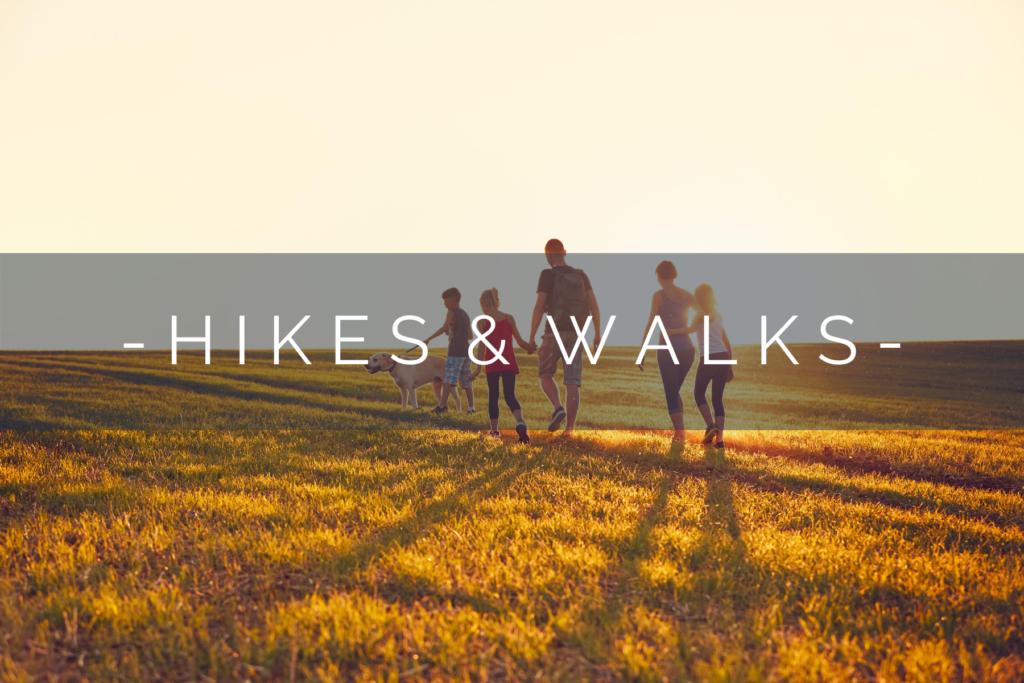 DOG-FRIENDLY-HIKES-WALKS-HOME