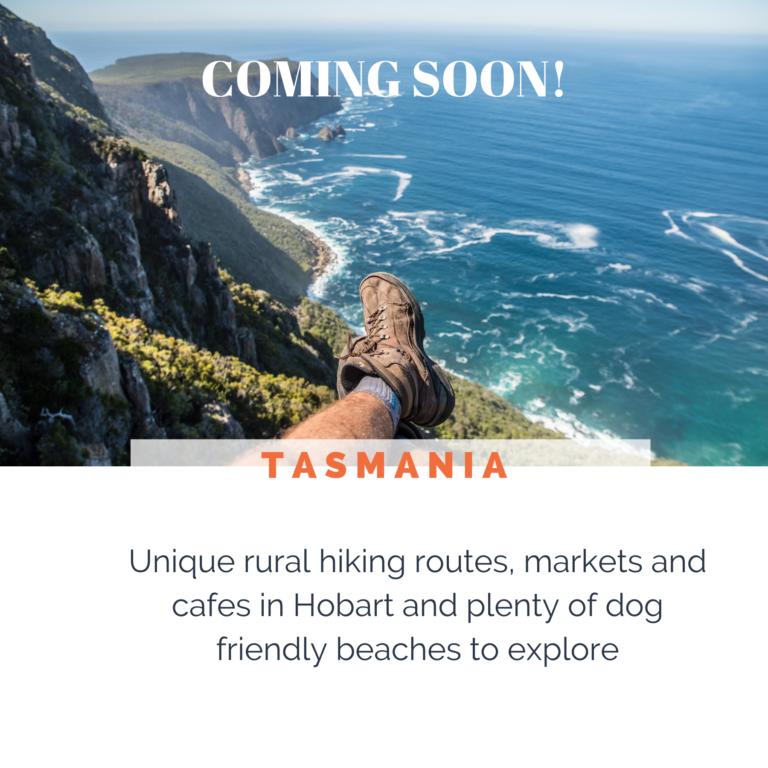 DOG-FRIENDLY-TASMANIA-2