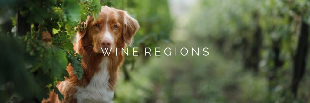 WINE REGIONS 2