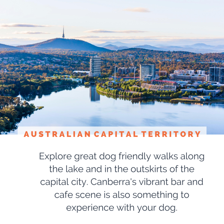 dog-friendly-canberra-act