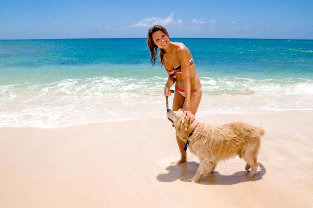 dog-friendly-mid-north-coast-hero-mobile
