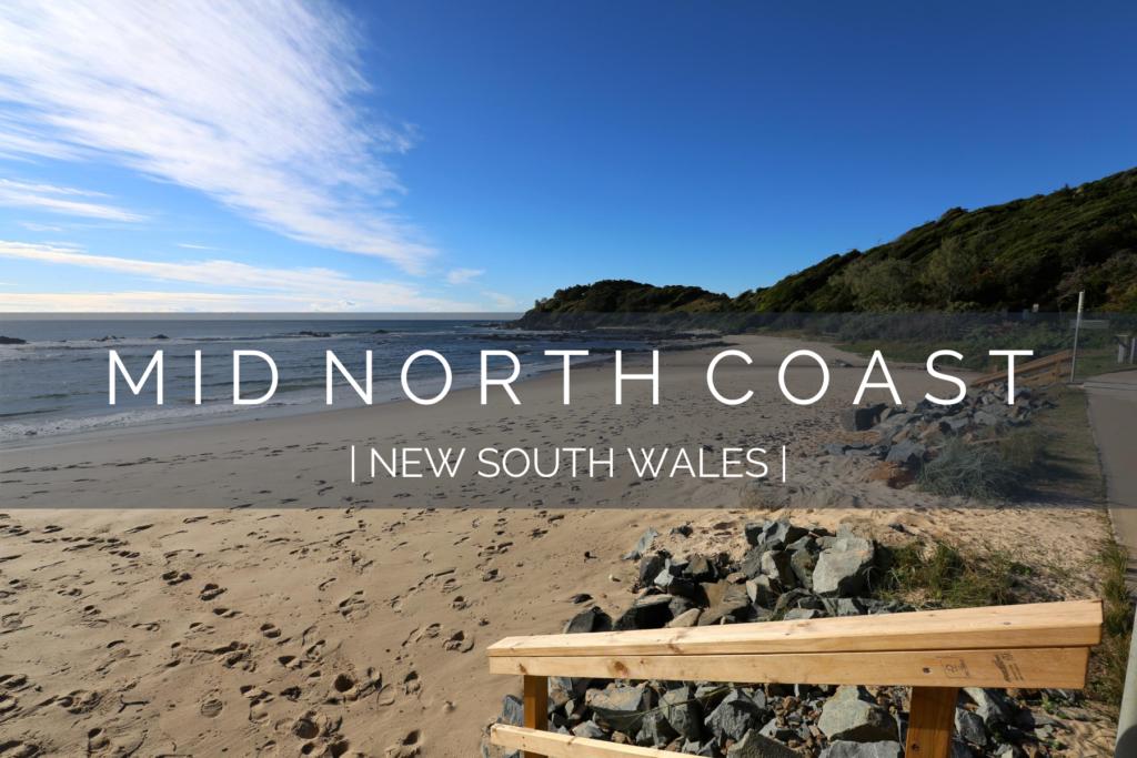 dog-friendly-mid-north-coast