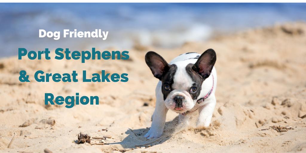dog-friendly-port-stephens-mid-north-coast