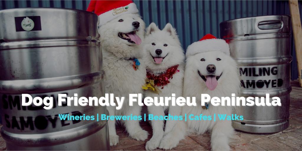 Dog Friendly Fleurieu Peninsula