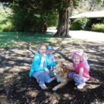 autumn mist dog friendly accommodation 6 150x150