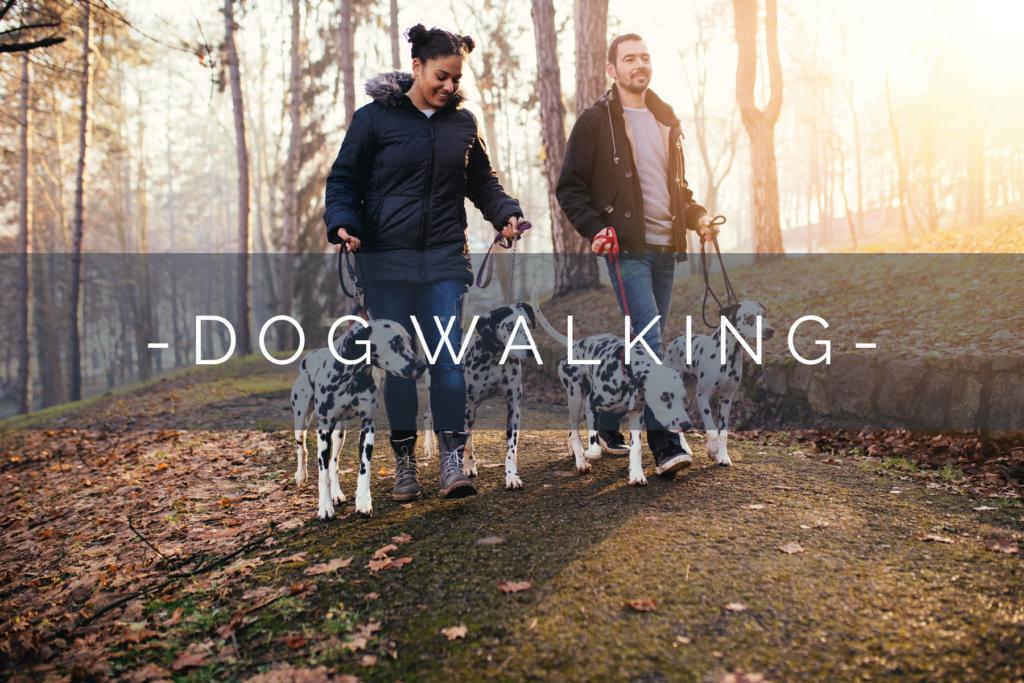 DOG-WALKING-HOME