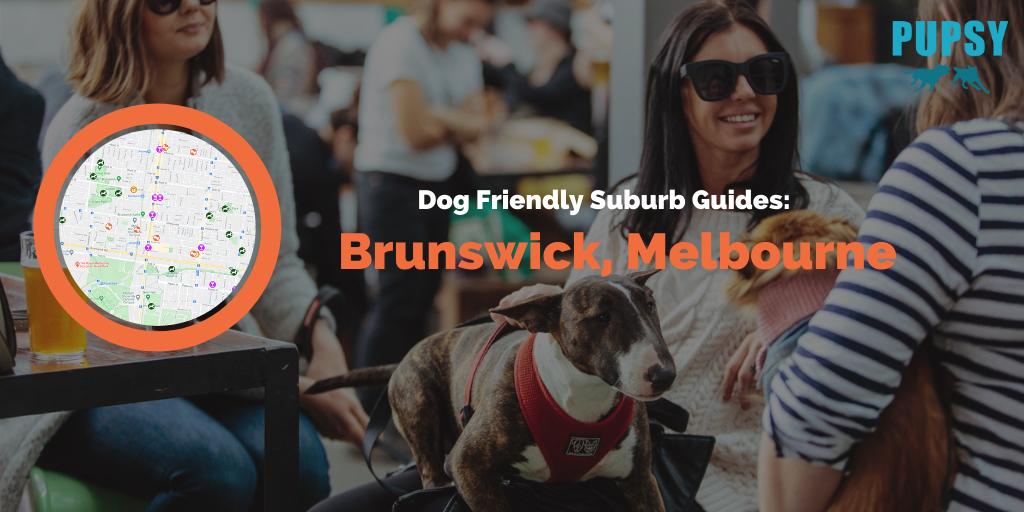 Dog Friendly Brunswick