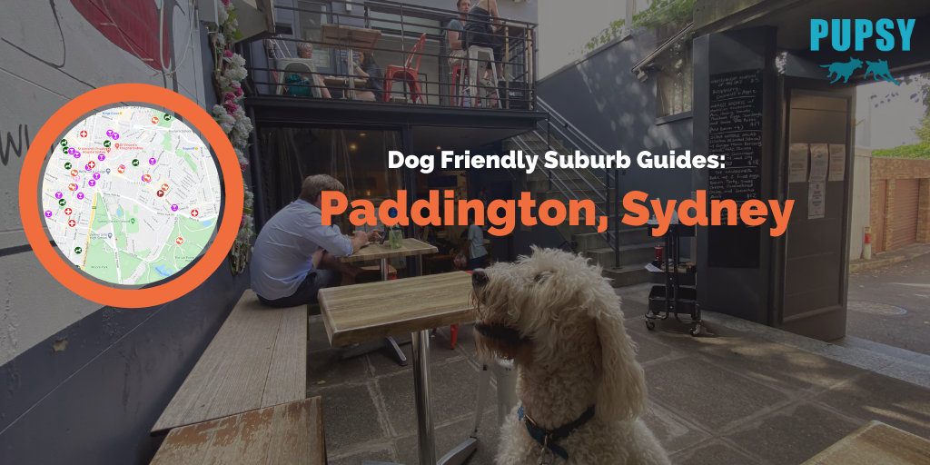 Dog Friendly Paddington Main