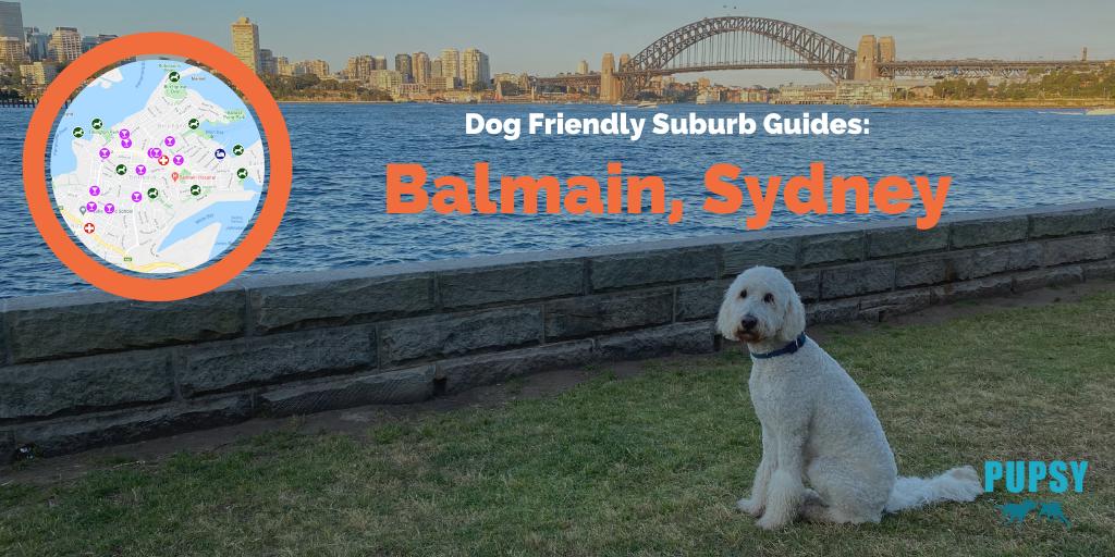 Dog-Friendly-Balmain-NEW