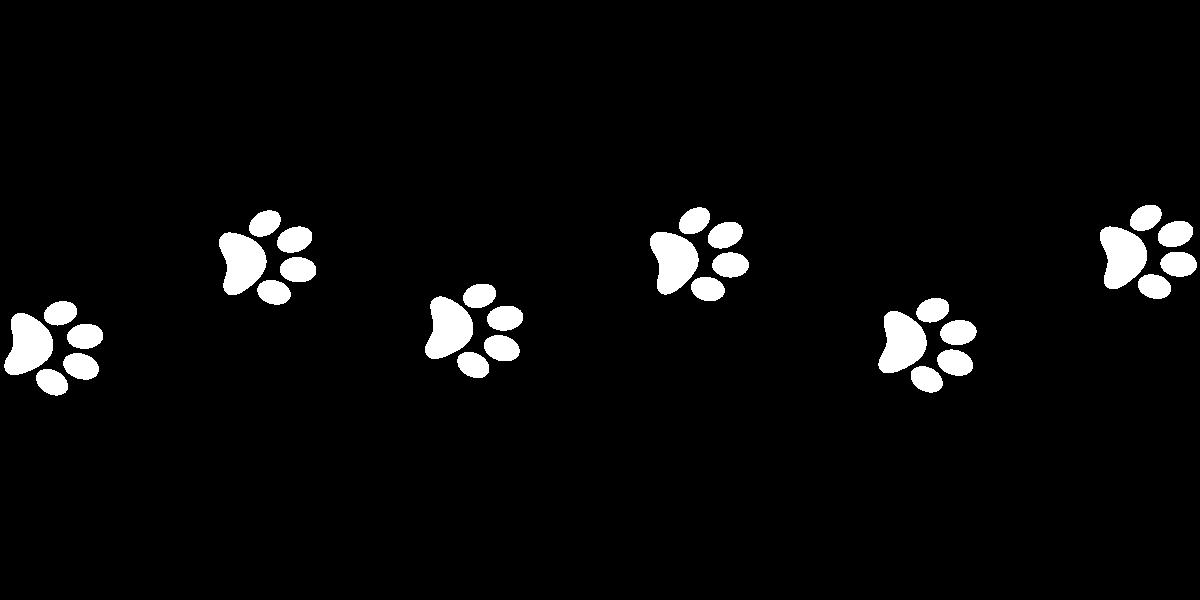 Paw Prints White