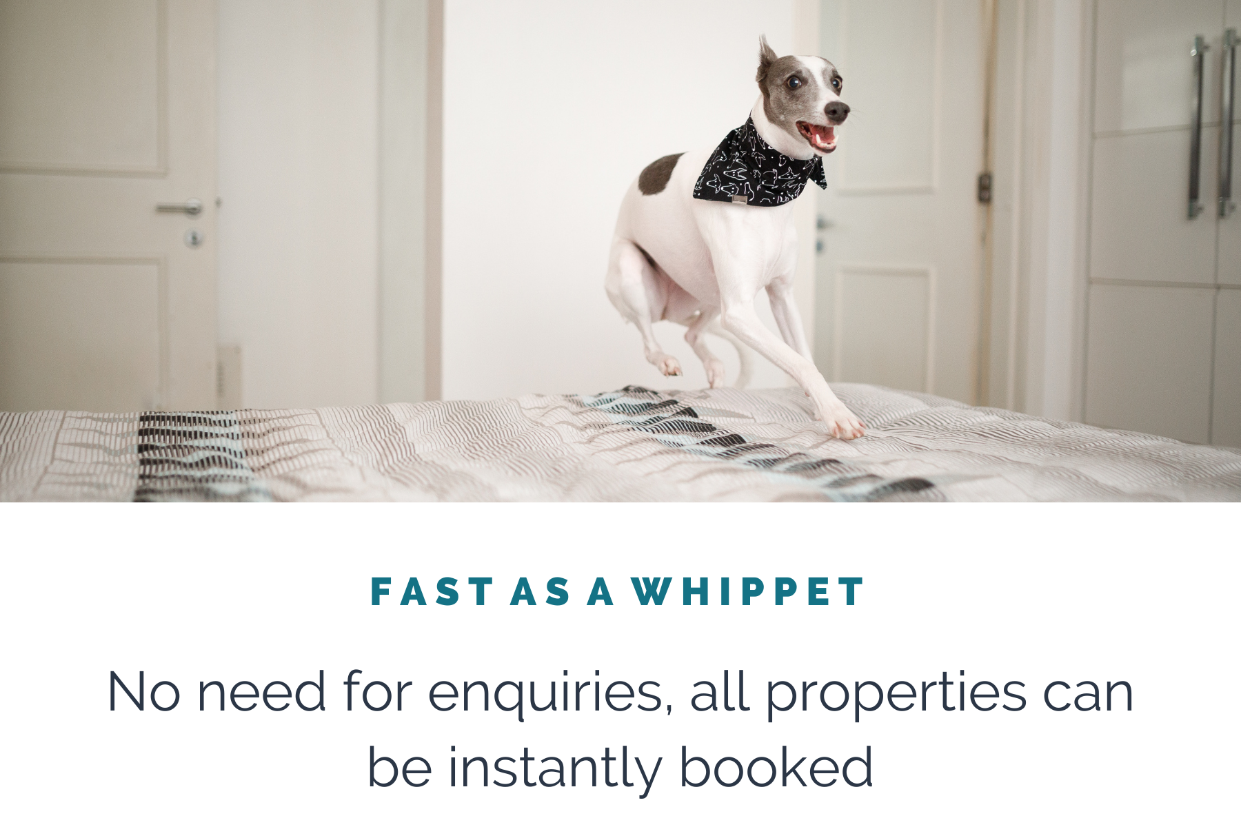 Instant Bookings