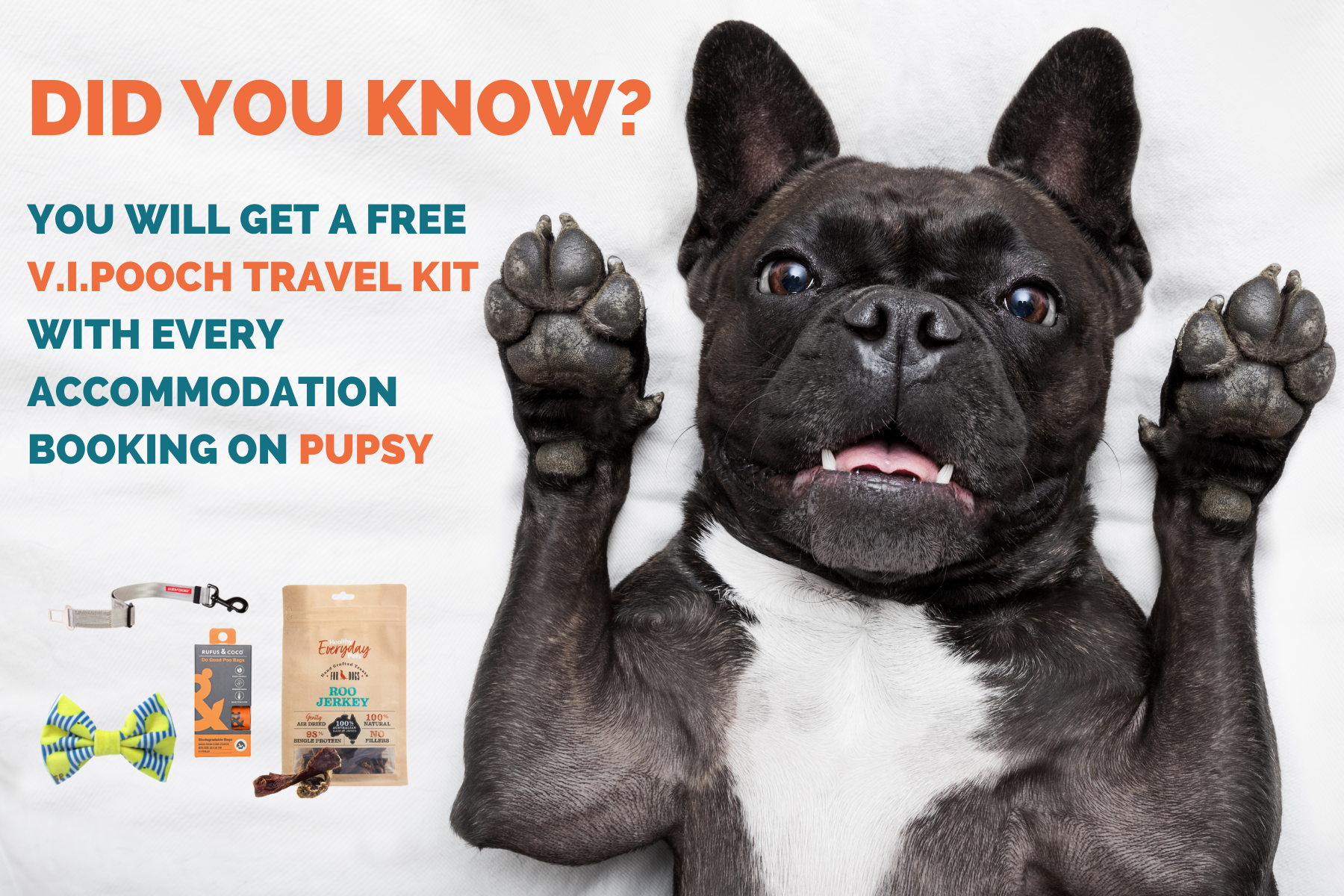 VIPOOCH TRAVEL KIT ACCOMMODATION PAGE
