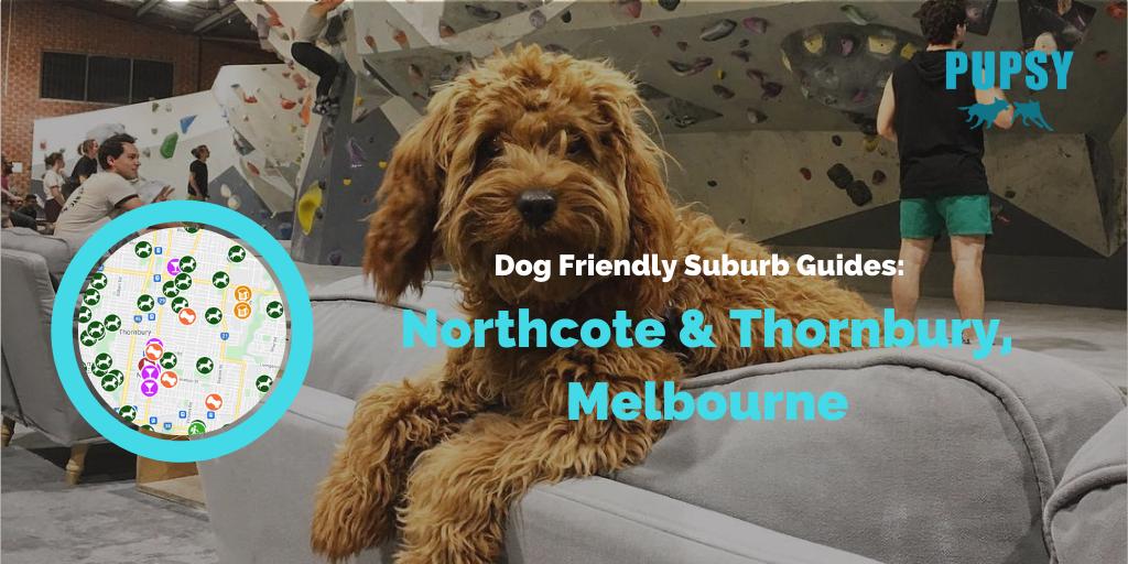 dog-friendly-northcote-and-thornbury