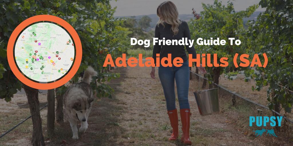 Dog-Friendly-Adelaide-Hills