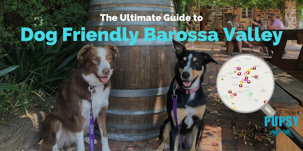 dog-friendly-barossa-valley