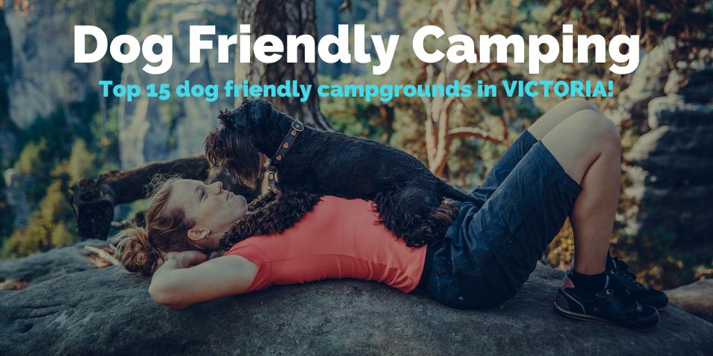 dog-friendly-camping-vic