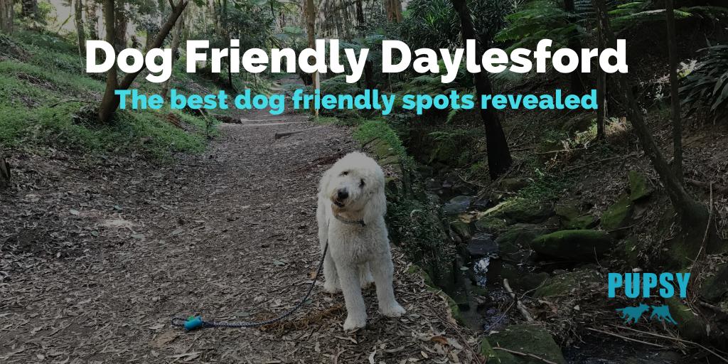 dog-friendly-daylesford