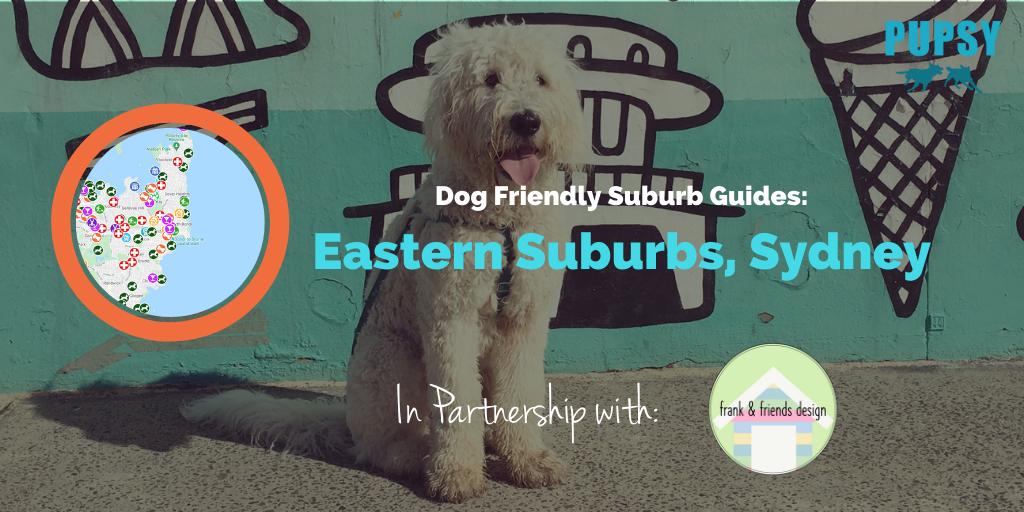 dog-friendly-eastern-suburbs-frankie