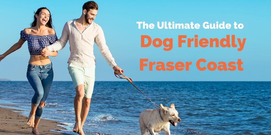 dog-friendly-fraser-coast