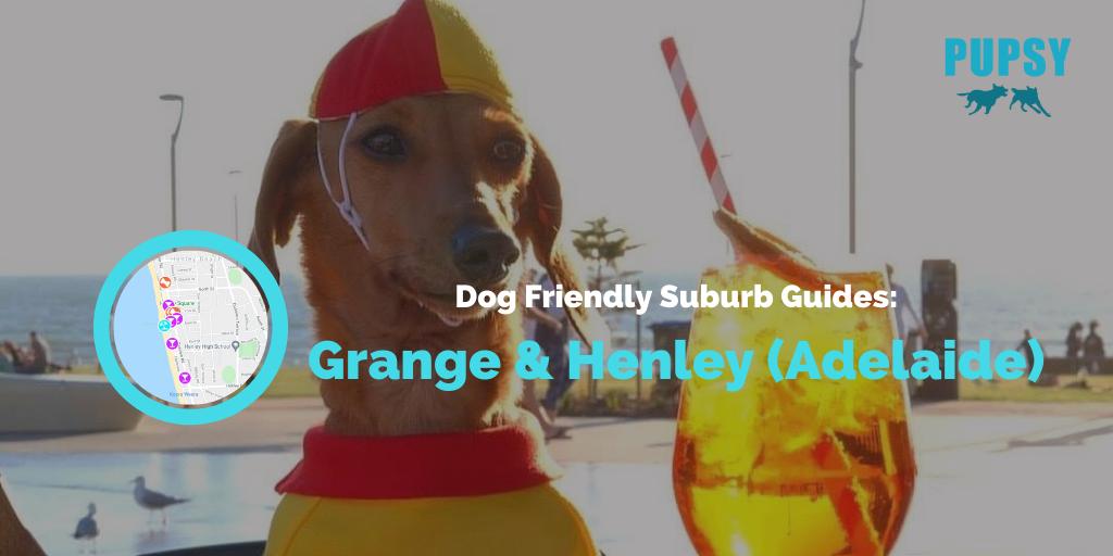 dog-friendly-grange-henley