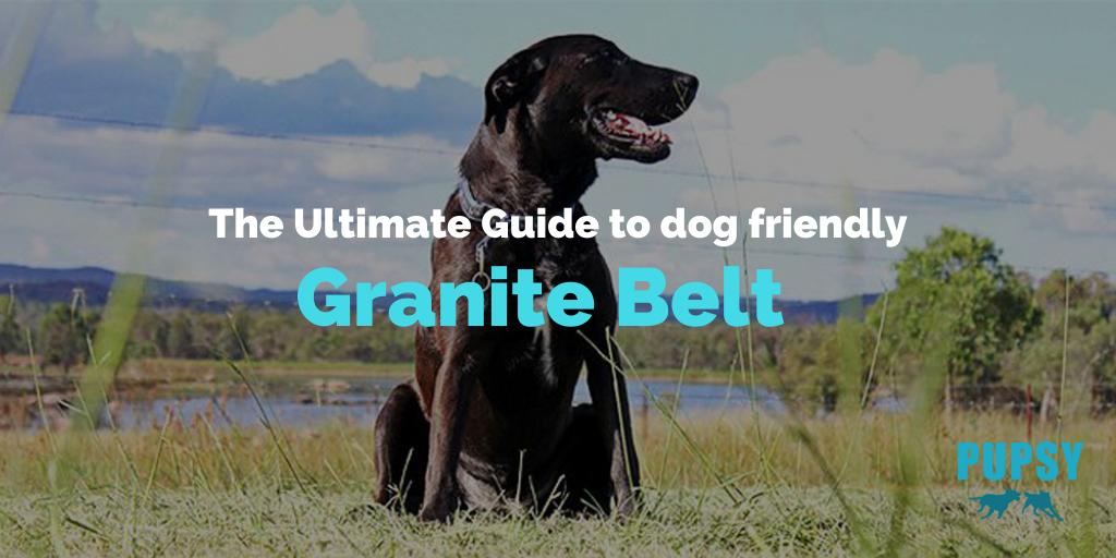 dog-friendly-granite-belt