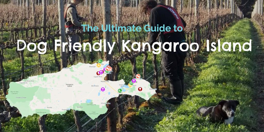 dog-friendly-kangaroo-island