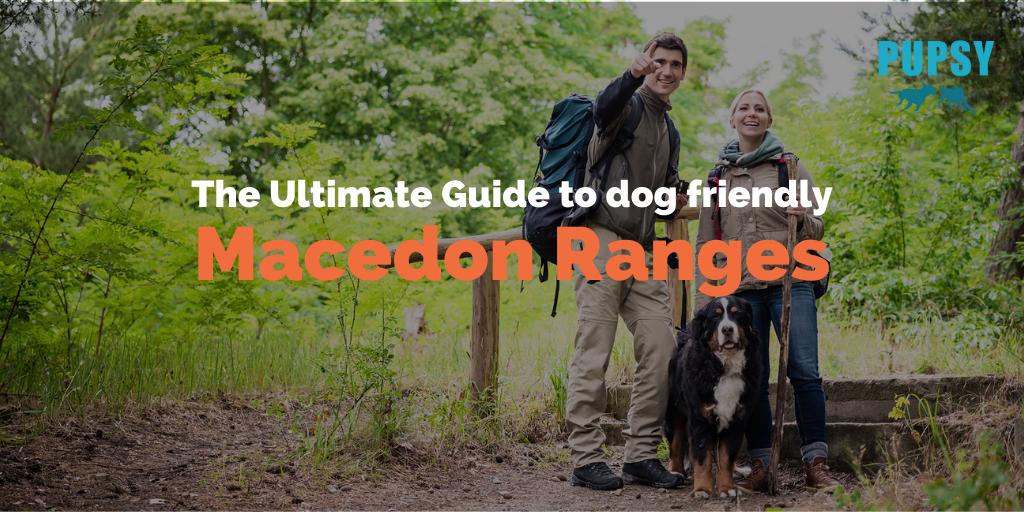 dog-friendly-macedon