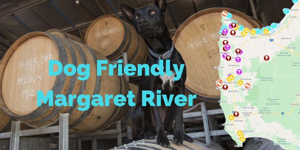 dog-friendly-margaret-river