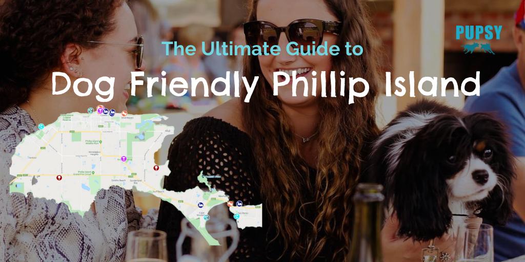 dog-friendly-phillip-island