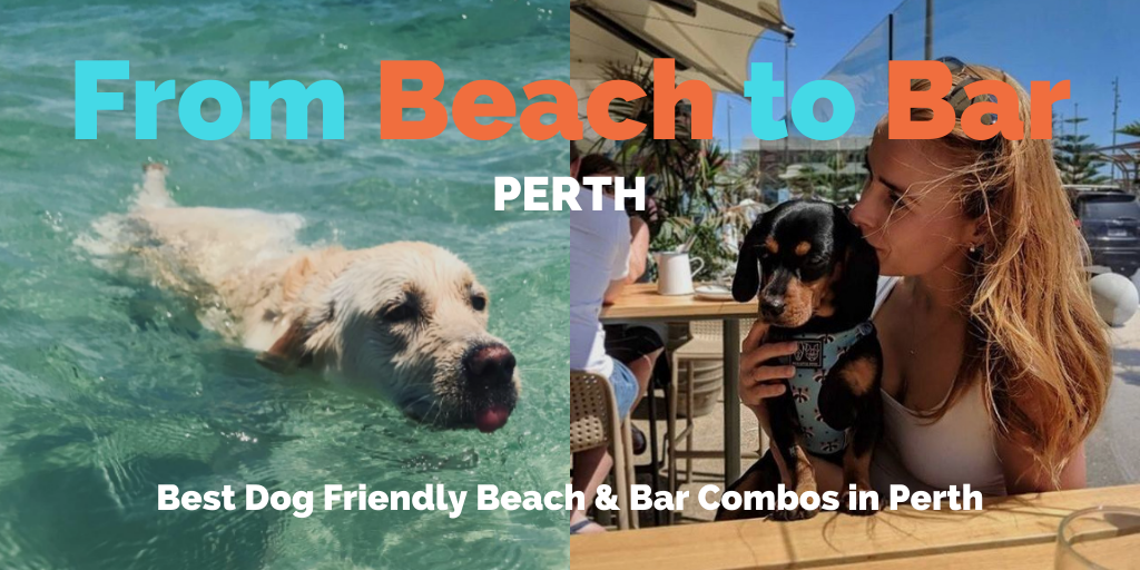 from-beach-to-bar-perth